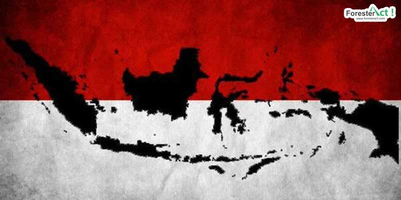 Peta Indonesia (pinterest.com)