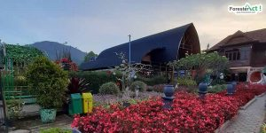 Taman Begonia (instagram.com)