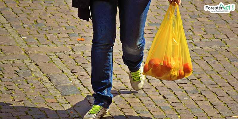 tas belanja plastik (pixabay.com)