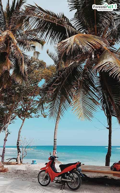 Berlibur ke Pantai Palippis (instagram.com)