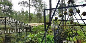 Orchid Forest Lembang (instagram.com)